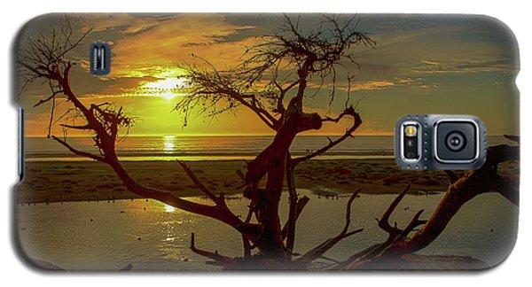 Pismo Sunset Galaxy S5 Case