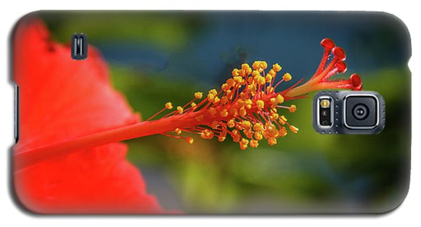 Galaxy S5 Case featuring the photograph Pistil Of Hibiscus by Robert Bales