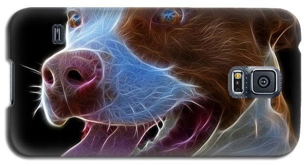 Pit Bull Fractal Pop Art - 7773 - F - Bb Galaxy S5 Case