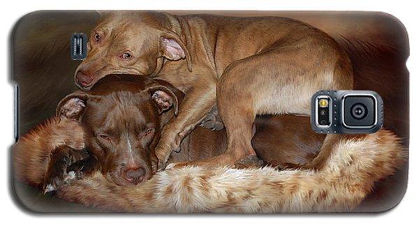 Pitbulls - The Softer Side Galaxy S5 Case