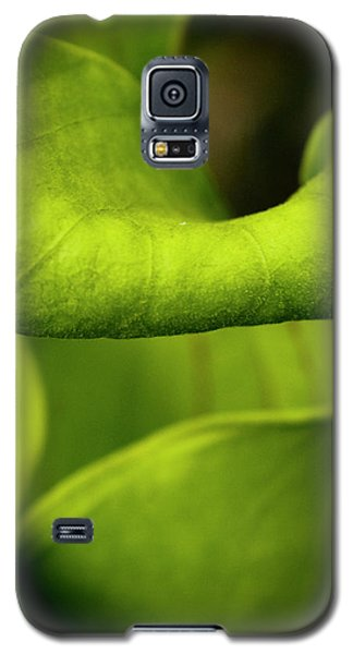 Pitcher Plant Abstract Galaxy S5 Case