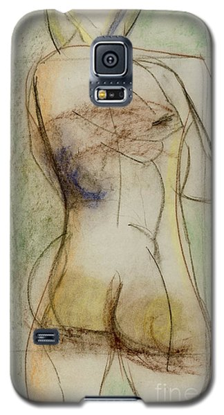 Placid Galaxy S5 Case