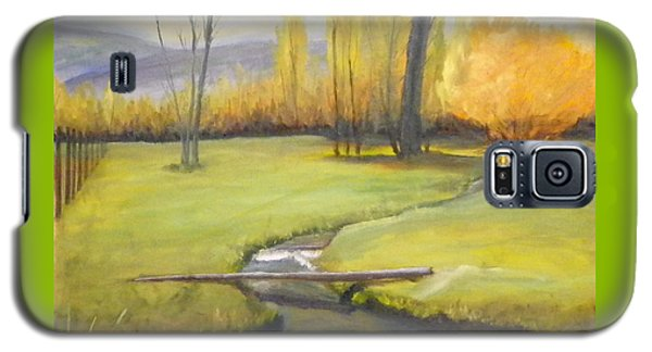 Galaxy S5 Case featuring the painting Placid Stream In Field by Sherril Porter