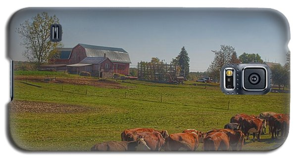 1014 - Plain Road Farm And Cows I Galaxy S5 Case