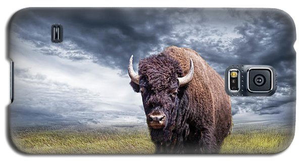 Plains Buffalo On The Prairie Galaxy S5 Case
