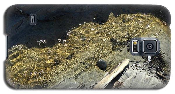 Planet Beach Galaxy S5 Case