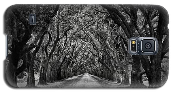 Plantation Oak Alley Galaxy S5 Case