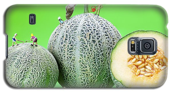 Galaxy S5 Case featuring the photograph Planting Cantaloupe Melons Little People On Food by Paul Ge