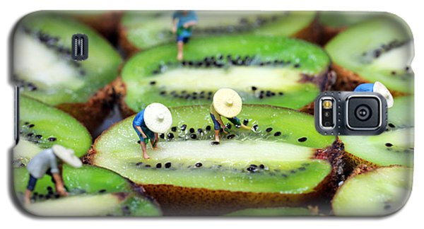 Planting Rice On Kiwifruit Galaxy S5 Case by Paul Ge