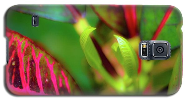 Plants In Hawaii Galaxy S5 Case