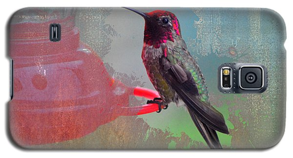 Plate 031 - Hummingbird Grunge Series Galaxy S5 Case