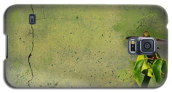 Plate 087 - Hummingbird Grunge Series Galaxy S5 Case