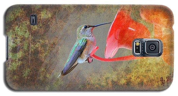 Plate 153 - Hummingbird Grunge Series Galaxy S5 Case