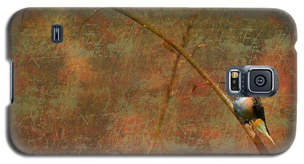 Plate 225 - Hummingbird Grunge Series Galaxy S5 Case