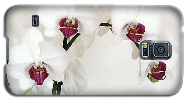 Platnum Beauty Orchids Galaxy S5 Case by Marsha Heiken