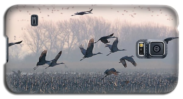 Platte River Morn Galaxy S5 Case
