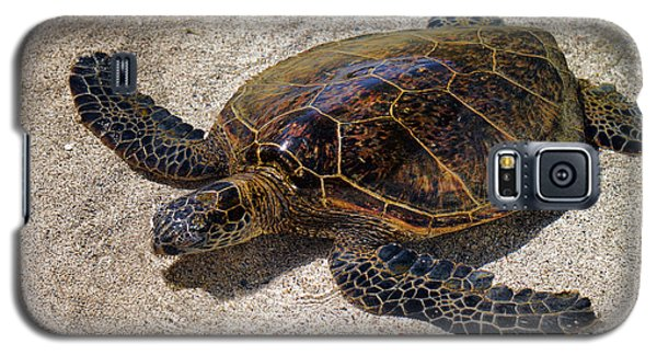 Playful Honu Galaxy S5 Case