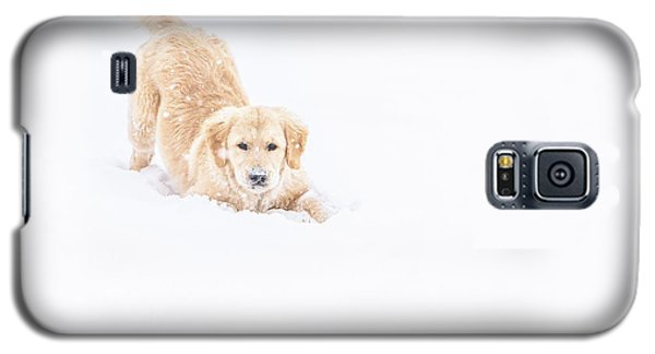 Playful Puppy In So Much Snow Galaxy S5 Case
