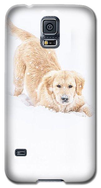 Playful Puppy In So Much Snow Galaxy S5 Case