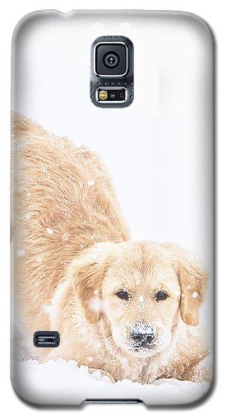 Playful Puppy Galaxy S5 Case