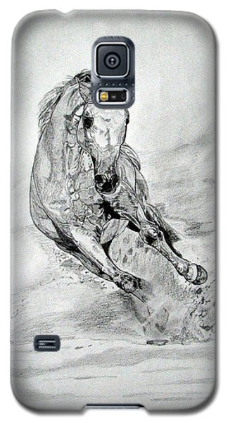 Galaxy S5 Case featuring the drawing Playfull by Melita Safran