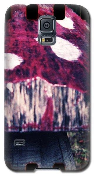 Playground #329 Galaxy S5 Case