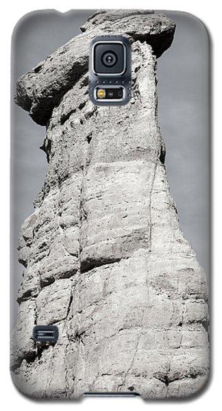Galaxy S5 Case featuring the photograph Plaza Blanca Hoodoo by Britt Runyon