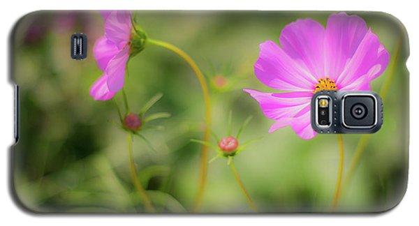 Pleasant Summer Wild Flowers Galaxy S5 Case