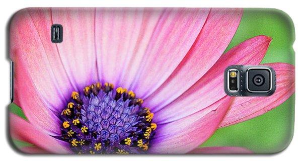 Pleasing Petals Galaxy S5 Case