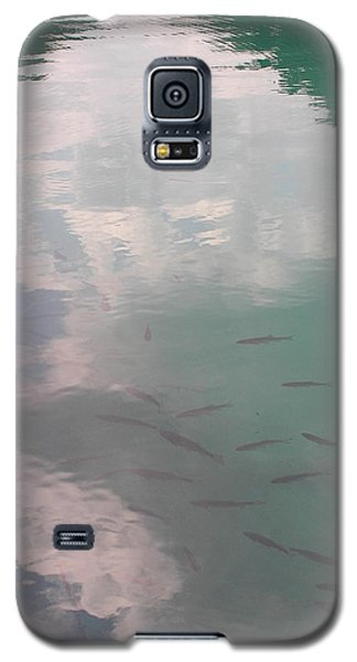 Plitvicelake Galaxy S5 Case