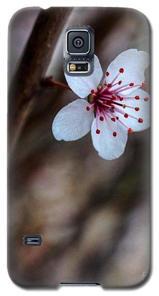 Plum Flower Galaxy S5 Case