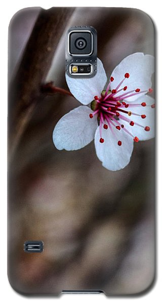 Plum Flower Galaxy S5 Case