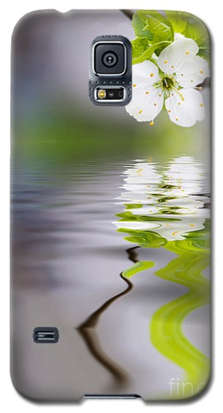 Plum Tree Blooming Galaxy S5 Case