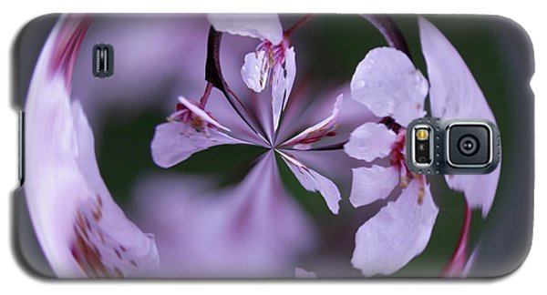 Plum Tree Orb Galaxy S5 Case by Bill Barber