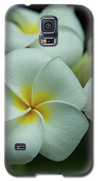 Galaxy S5 Case featuring the photograph Plumeria by Angie Vogel