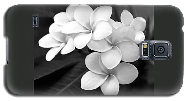 Plumeria - Black And White Galaxy S5 Case