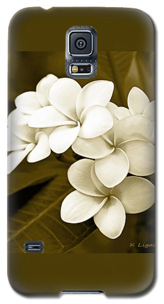 Galaxy S5 Case featuring the photograph Plumeria - Brown Tones by Kerri Ligatich