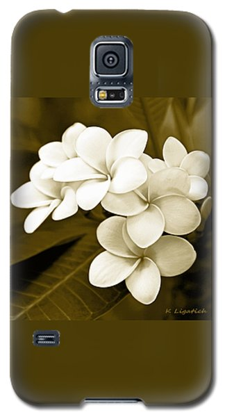 Plumeria - Brown Tones Galaxy S5 Case