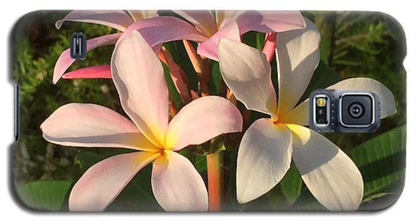Plumeria Heaven Galaxy S5 Case by LeeAnn Kendall