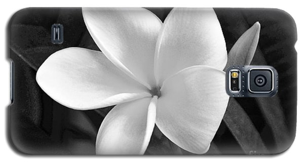Plumeria In Monochrome Galaxy S5 Case
