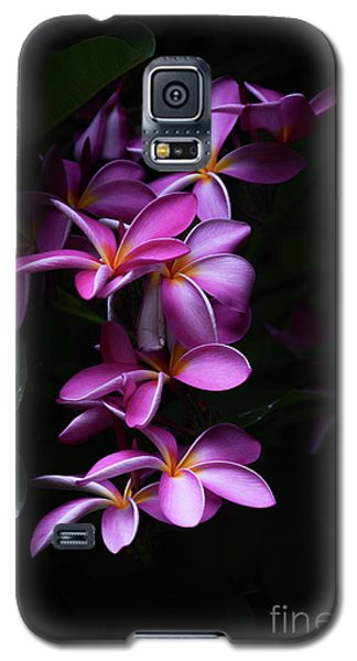 Galaxy S5 Case featuring the photograph Plumeria Light by Kelly Wade