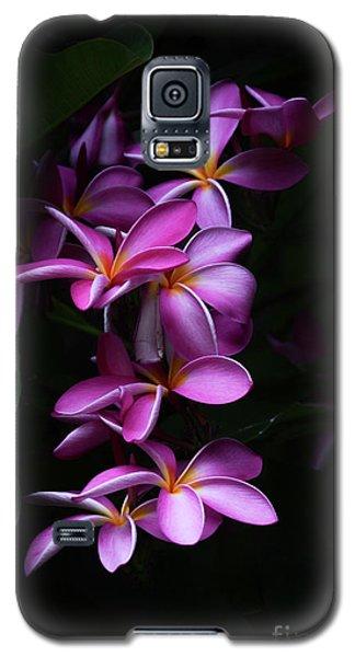 Plumeria Light Galaxy S5 Case
