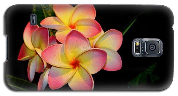 Plumeria Galaxy S5 Case