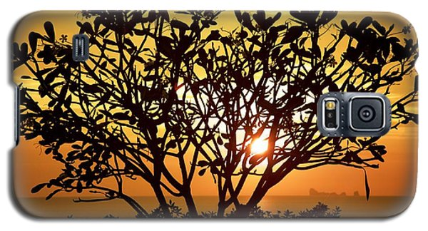 Galaxy S5 Case featuring the photograph Plumeria Sunset by Colleen Williams