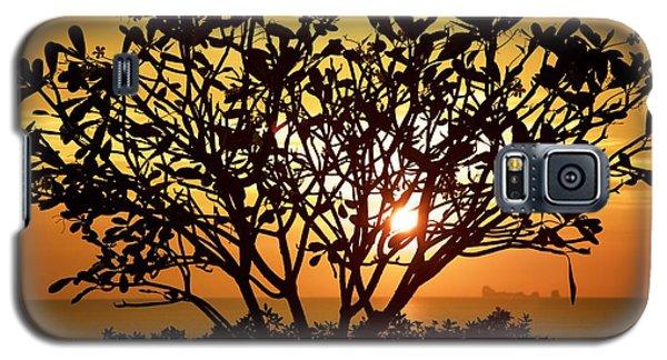 Plumeria Sunset Galaxy S5 Case