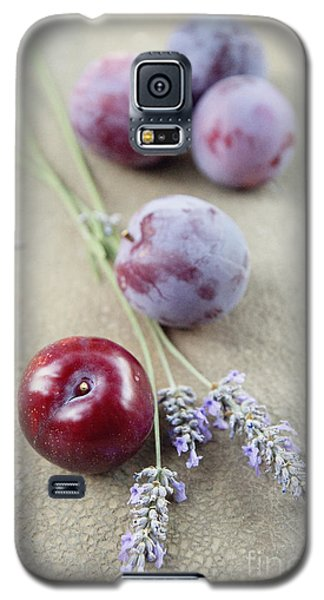 Galaxy S5 Case featuring the photograph Plums And Lavender by Cindy Garber Iverson