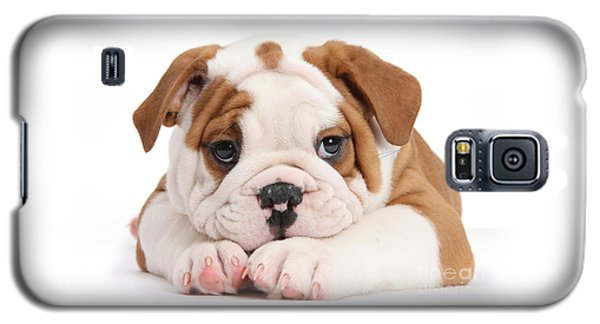 Po-faced Bulldog Galaxy S5 Case