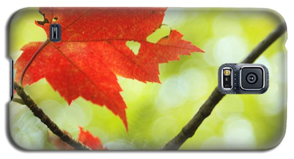 Galaxy S5 Case featuring the photograph Poesie D'automne  by Aimelle