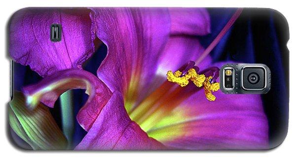 Poignant Galaxy S5 Case