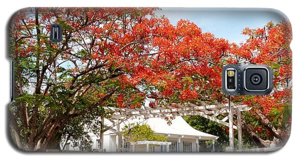 Poinciana Cottage Galaxy S5 Case by Amar Sheow